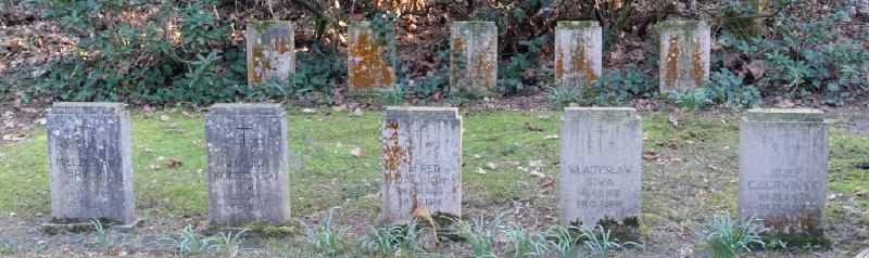 Spurensuche auf dem Waldfriedhof Bad Lippspringe