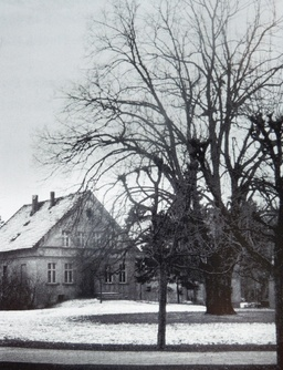 Das Wohnhaus Dammstraße 5
